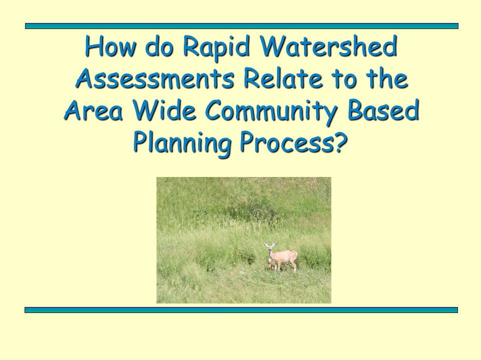 How do Rapid Watershed Assessments Relate to the Area Wide Community Based Planning Process?