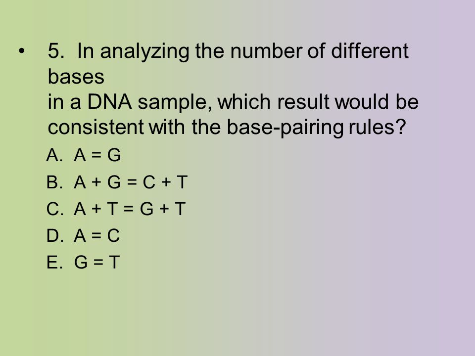 5. In analyzing the number of different bases in a DNA sample, which result would be consistent with the base-pairing rules? A. A = G B. A + G = C + T