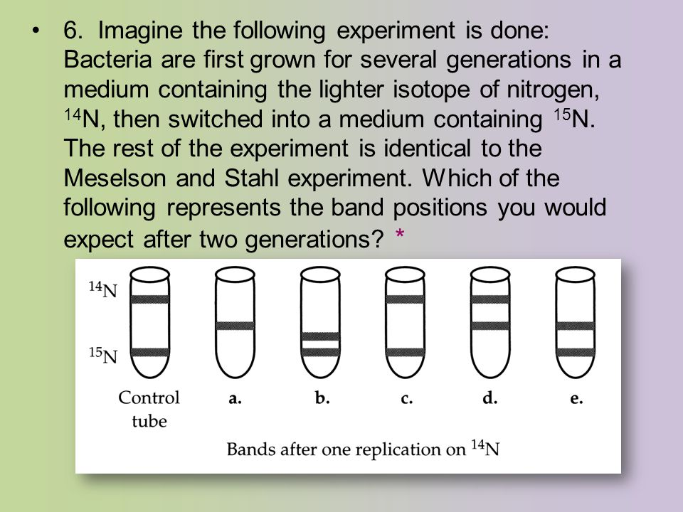 6. Imagine the following experiment is done: Bacteria are first grown for several generations in a medium containing the lighter isotope of nitrogen,