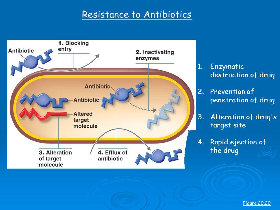 Resistance to Antibiotics Figure 20.20 1.Enzymatic destruction of drug 2.Prevention of penetration of drug 3.Alteration of drug s target site 4.Rapid ejection of the drug