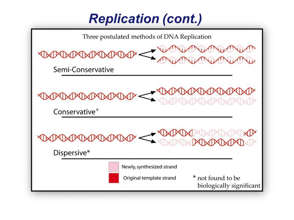 Replication (cont.)
