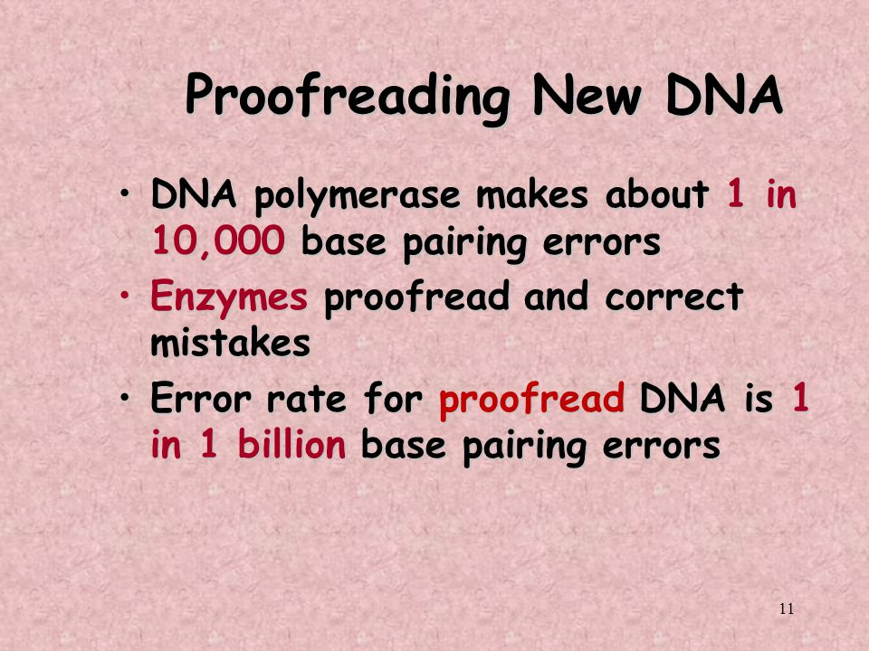 11 Proofreading New DNA DNA polymerase makes about 1 in 10,000 base pairing errorsDNA polymerase makes about 1 in 10,000 base pairing errors Enzymes p