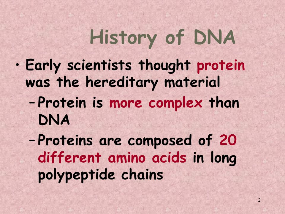 2 History of DNA Early scientists thought protein was the hereditary material –Protein is more complex than DNA –Proteins are composed of 20 different amino acids in long polypeptide chains