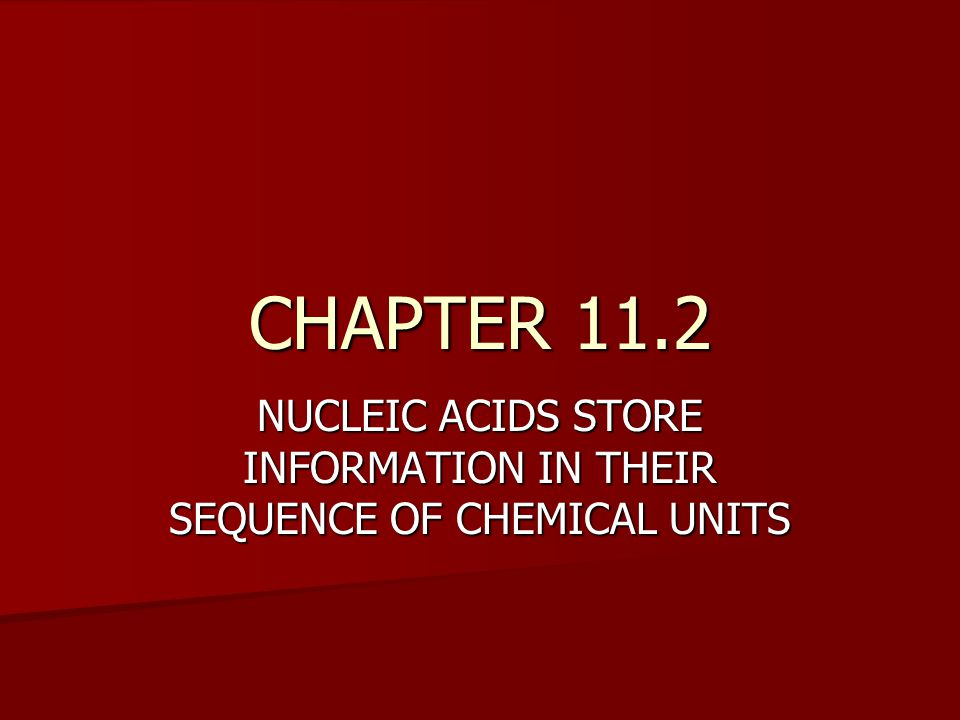 CHAPTER 11.2 NUCLEIC ACIDS STORE INFORMATION IN THEIR SEQUENCE OF CHEMICAL UNITS