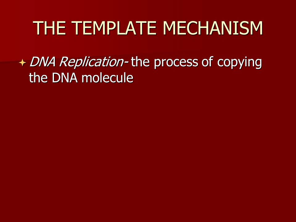 THE TEMPLATE MECHANISM  DNA Replication- the process of copying the DNA molecule