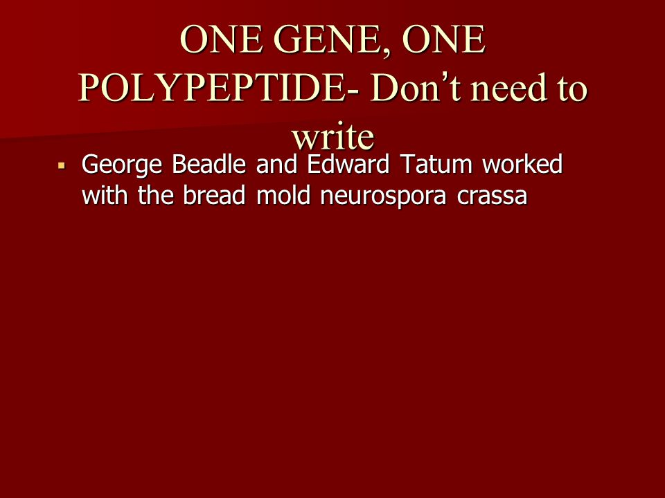 ONE GENE, ONE POLYPEPTIDE- Don't need to write  George Beadle and Edward Tatum worked with the bread mold neurospora crassa