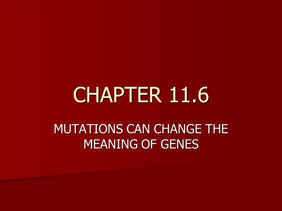 CHAPTER 11.6 MUTATIONS CAN CHANGE THE MEANING OF GENES