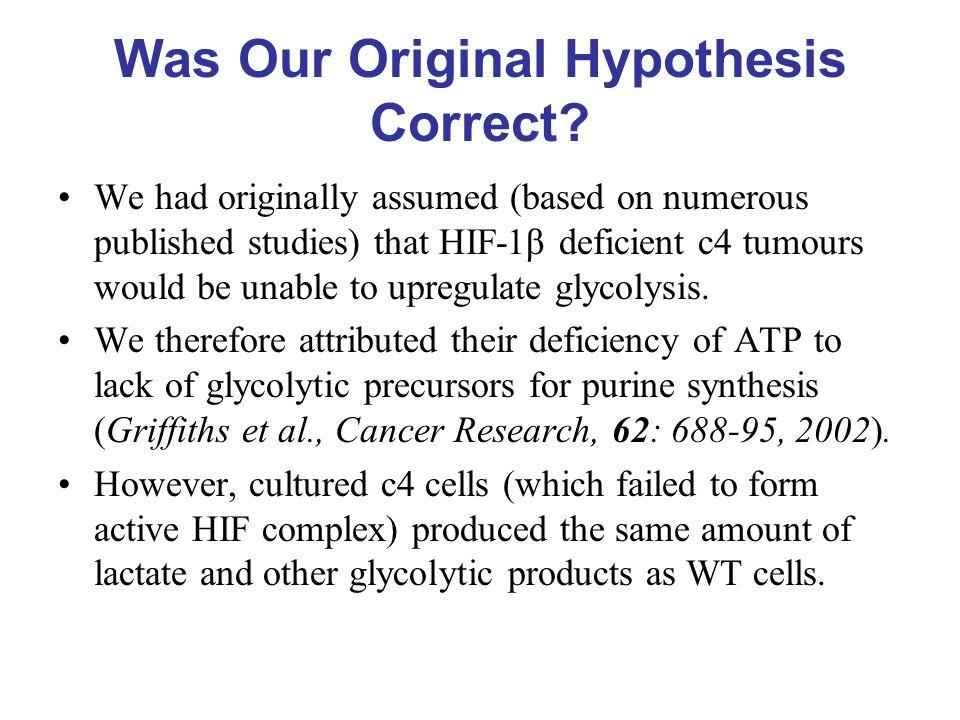 Was Our Original Hypothesis Correct.