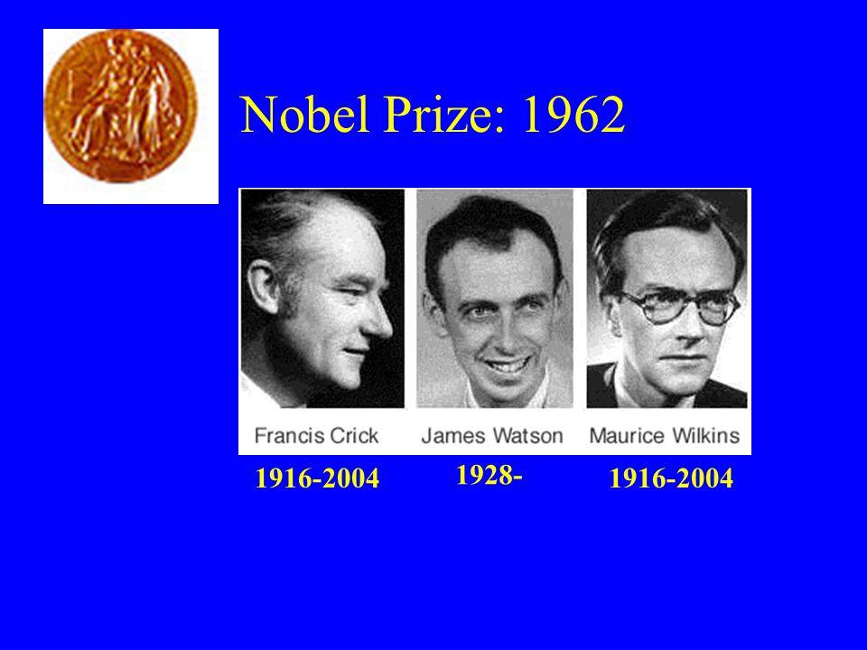 Nobel Prize: 1962 1928- 1916-2004