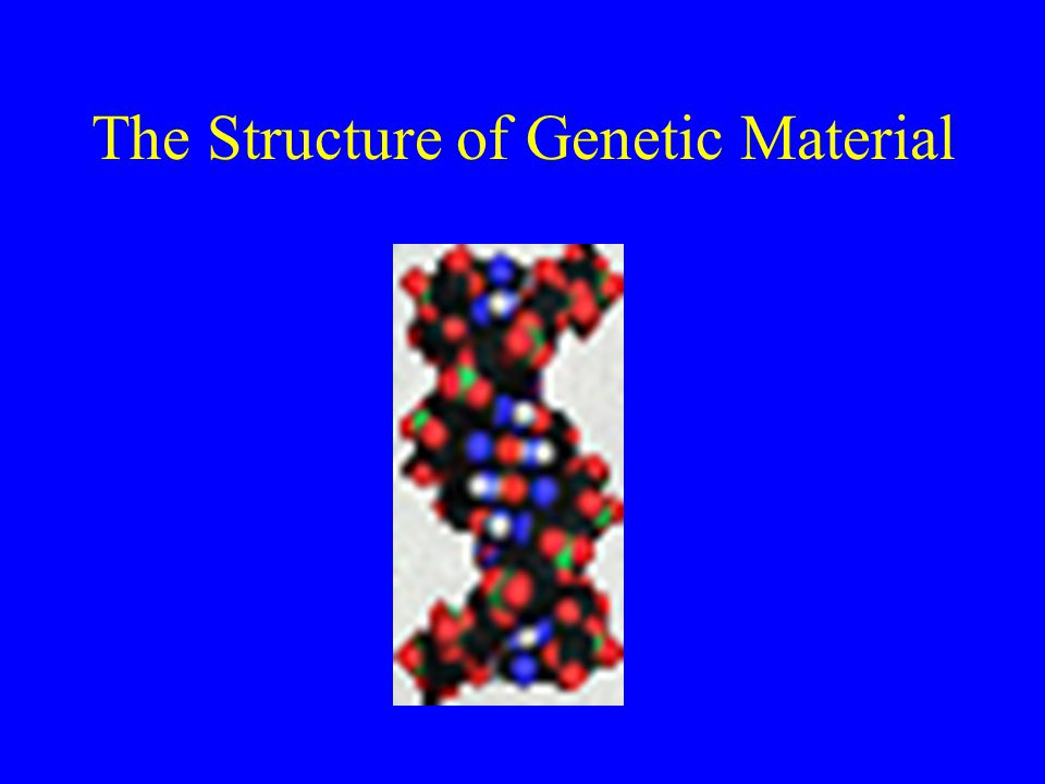 The Structure of Genetic Material