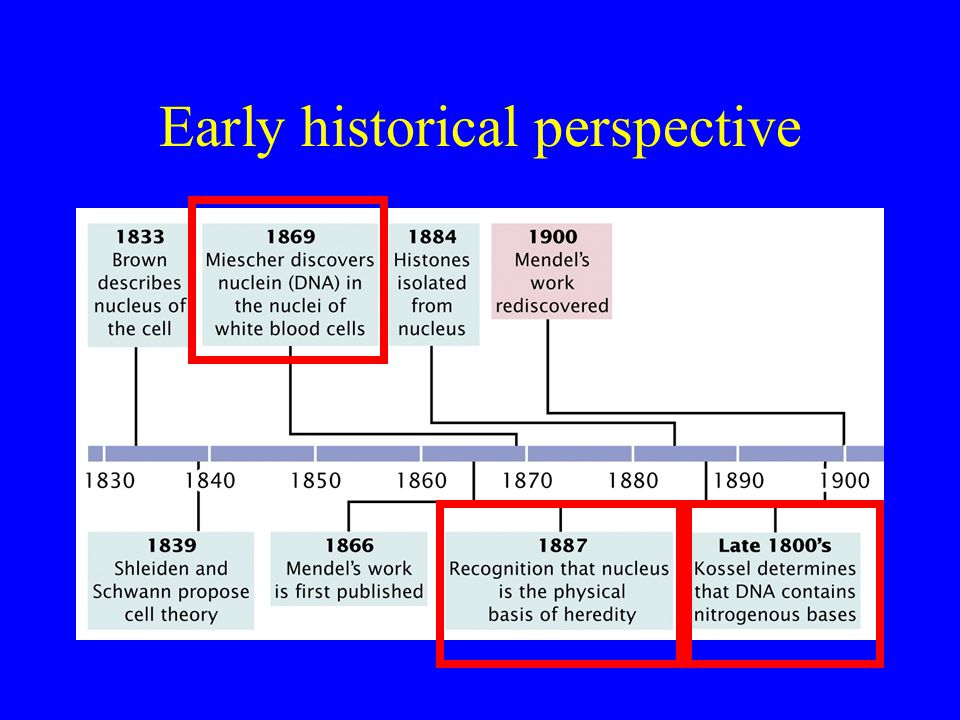 Early historical perspective