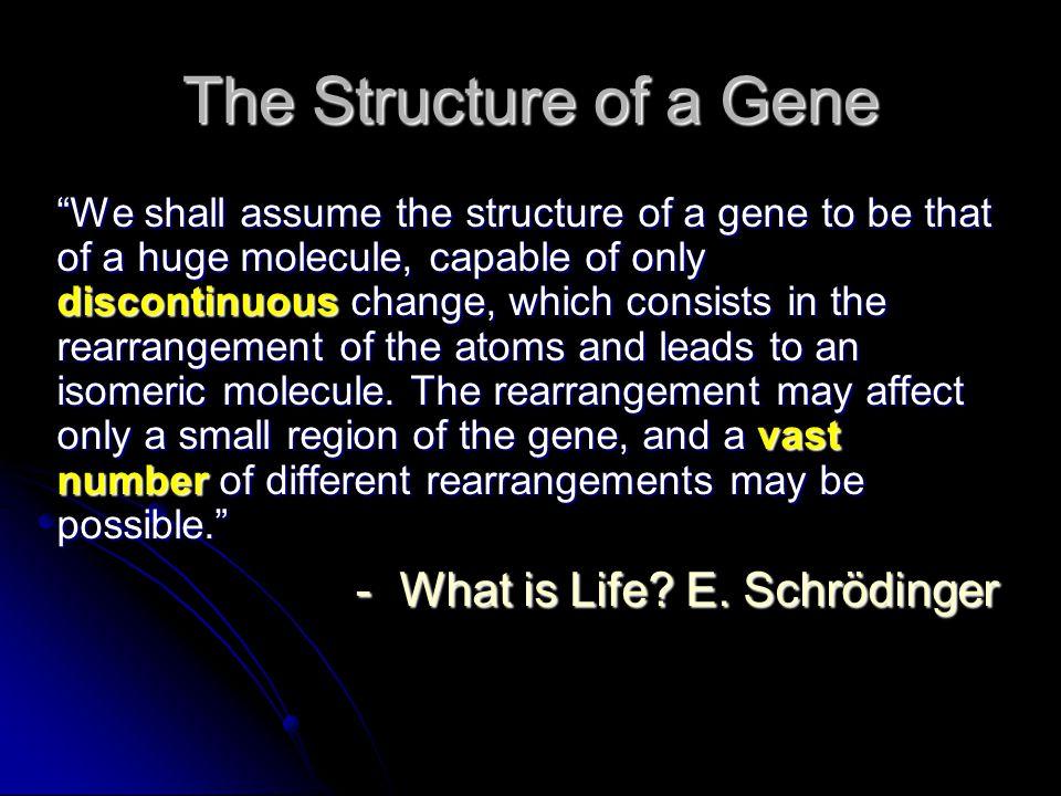 1966: Genetic Code Marshall Nirenberg 與 H.