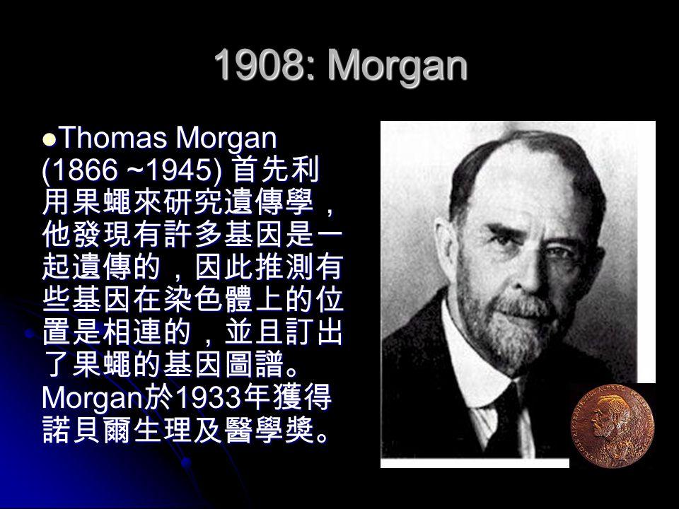 1908: Morgan Thomas Morgan (1866 ~1945) 首先利 用果蠅來研究遺傳學, 他發現有許多基因是一 起遺傳的,因此推測有 些基因在染色體上的位 置是相連的,並且訂出 了果蠅的基因圖譜。 Morgan 於 1933 年獲得 諾貝爾生理及醫學獎。 Thomas Morgan (1866 ~1945) 首先利 用果蠅來研究遺傳學, 他發現有許多基因是一 起遺傳的,因此推測有 些基因在染色體上的位 置是相連的,並且訂出 了果蠅的基因圖譜。 Morgan 於 1933 年獲得 諾貝爾生理及醫學獎。