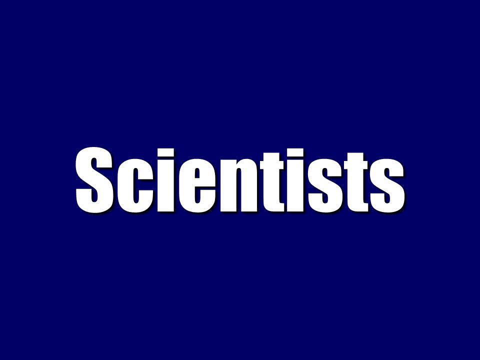 What are adenine, uracil, cytosine, and guanine?