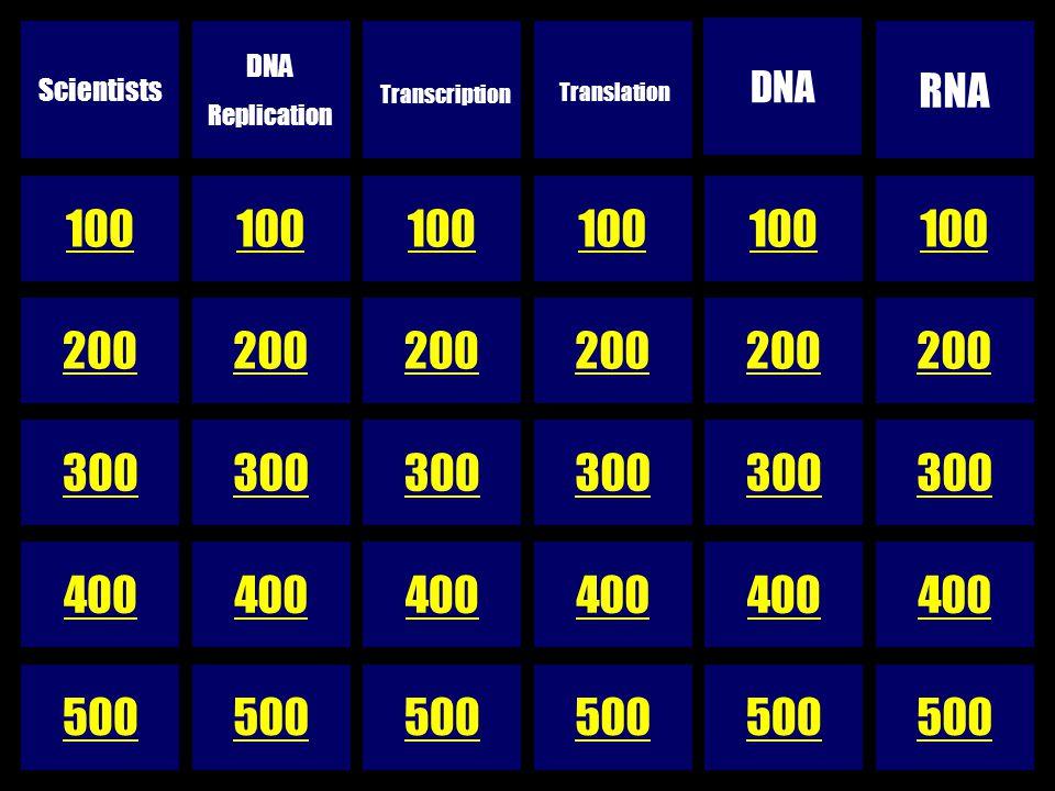 200 300 400 500 Scientists DNA Replication Transcription Translation DNA RNA 100 200 300 400 500 100 200 300 400 500 100 200 300 400 500 100 200 300 400 500 100 200 300 400 500 100