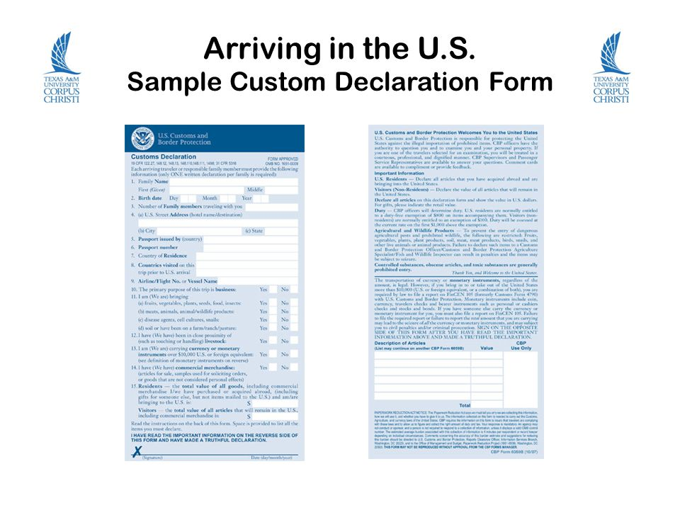 Arriving in the U.S. Sample Custom Declaration Form