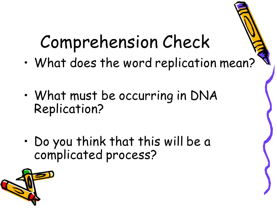 What does the word replication mean? What must be occurring in DNA Replication? Do you think that this will be a complicated process?