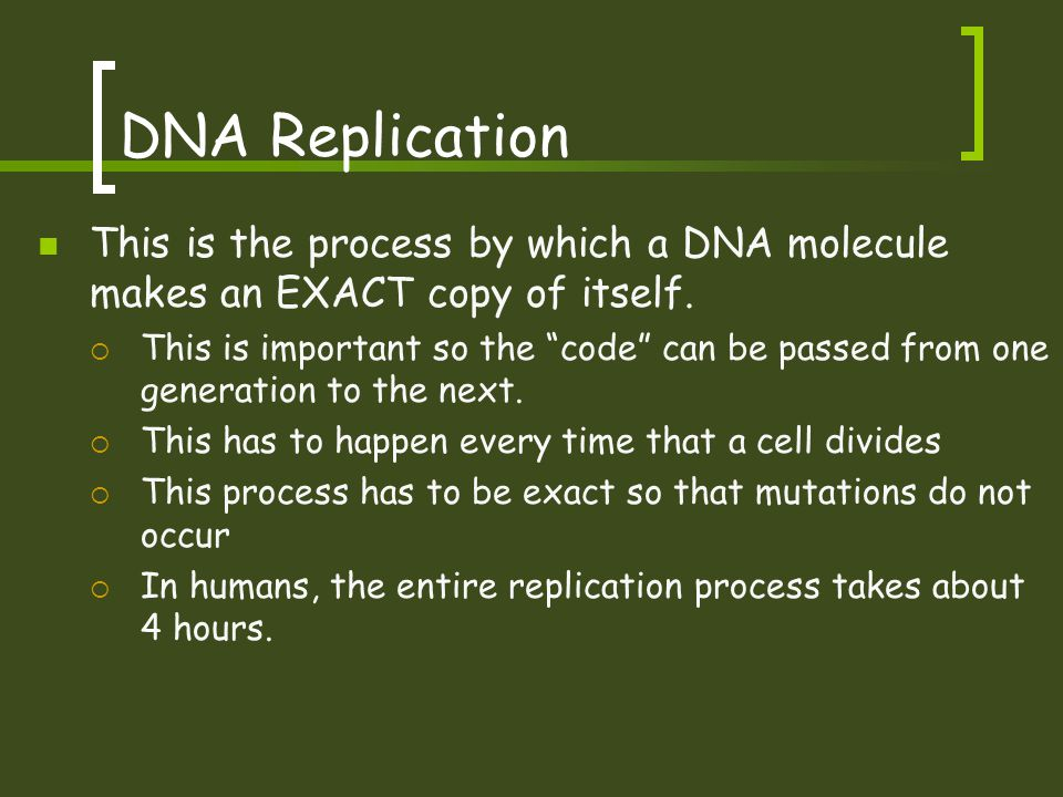 """DNA Replication This is the process by which a DNA molecule makes an EXACT copy of itself.  This is important so the """"code"""" can be passed from one ge"""