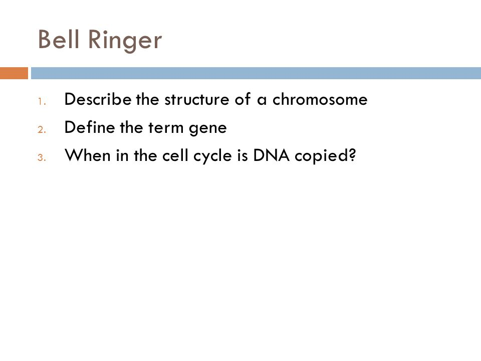 Bell Ringer- Answers  A chromosome consists of two replicated strands of DNA tightly coiled around proteins.