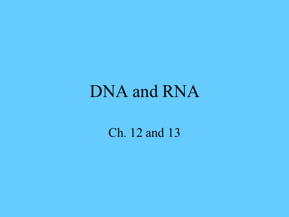 DNA and RNA Ch. 12 and 13
