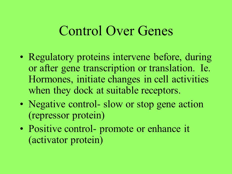 Control Over Genes Regulatory proteins intervene before, during or after gene transcription or translation. Ie. Hormones, initiate changes in cell act