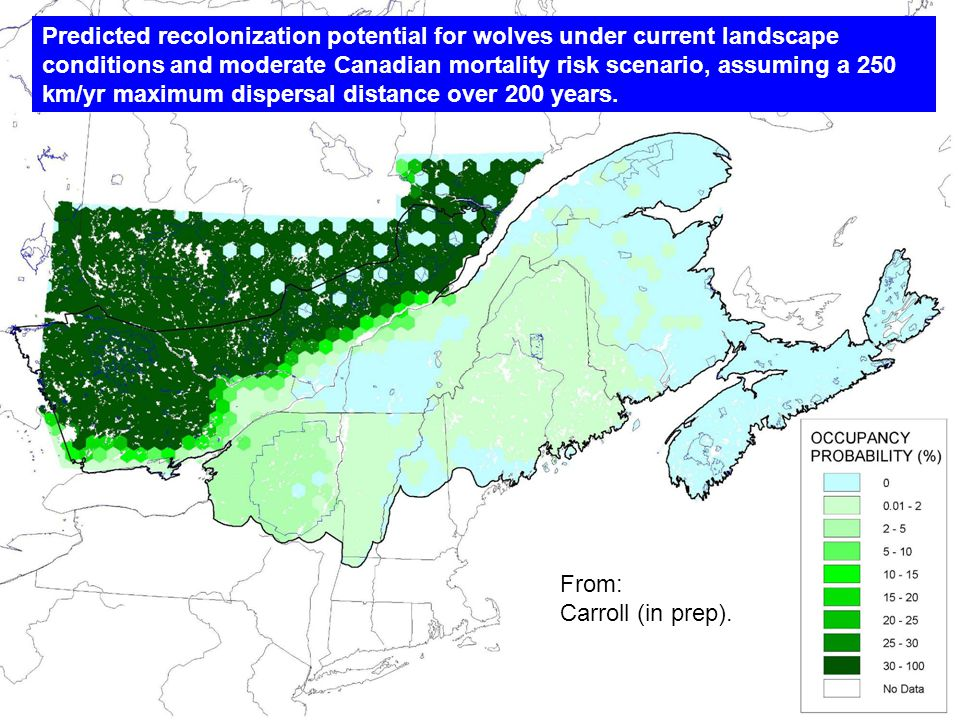 Predicted recolonization potential for wolves under current landscape conditions and moderate Canadian mortality risk scenario, assuming a 250 km/yr maximum dispersal distance over 200 years.