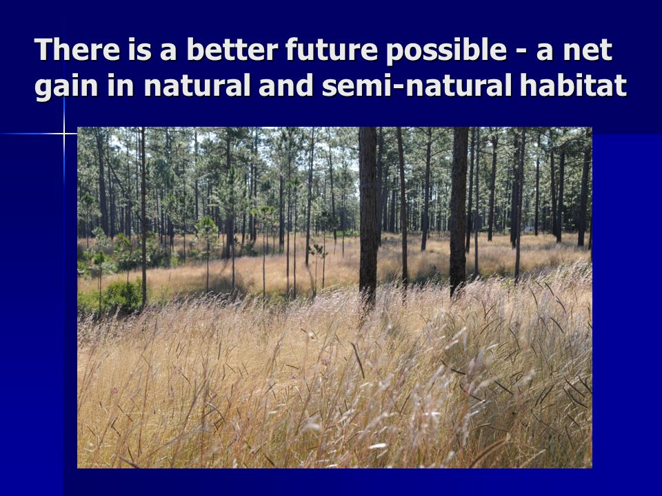 There is a better future possible - a net gain in natural and semi-natural habitat