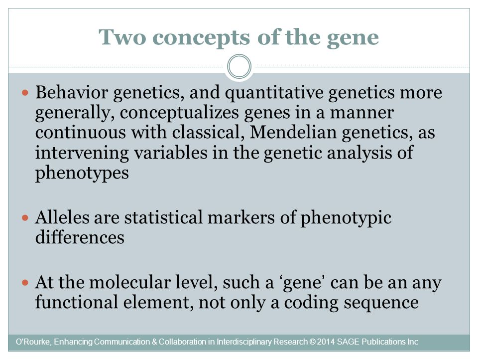 Two concepts of the gene Behavior genetics, and quantitative genetics more generally, conceptualizes genes in a manner continuous with classical, Mendelian genetics, as intervening variables in the genetic analysis of phenotypes Alleles are statistical markers of phenotypic differences At the molecular level, such a 'gene' can be an any functional element, not only a coding sequence O Rourke, Enhancing Communication & Collaboration in Interdisciplinary Research © 2014 SAGE Publications Inc
