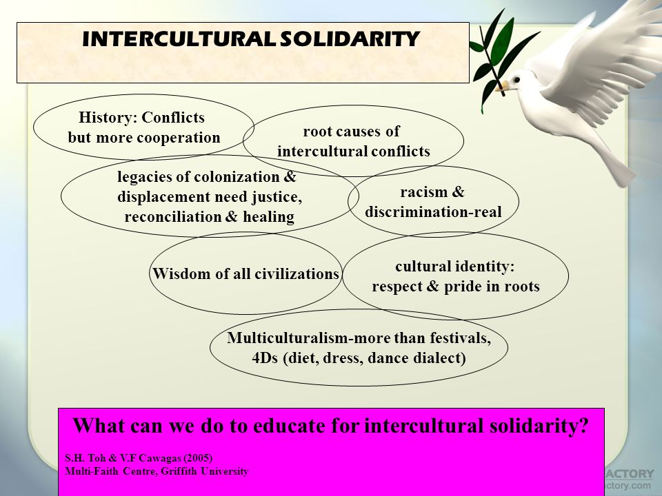 INTERCULTURAL SOLIDARITY History: Conflicts but more cooperation root causes of intercultural conflicts cultural identity: respect & pride in roots Wisdom of all civilizations racism & discrimination-real Multiculturalism-more than festivals, 4Ds (diet, dress, dance dialect) What can we do to educate for intercultural solidarity.
