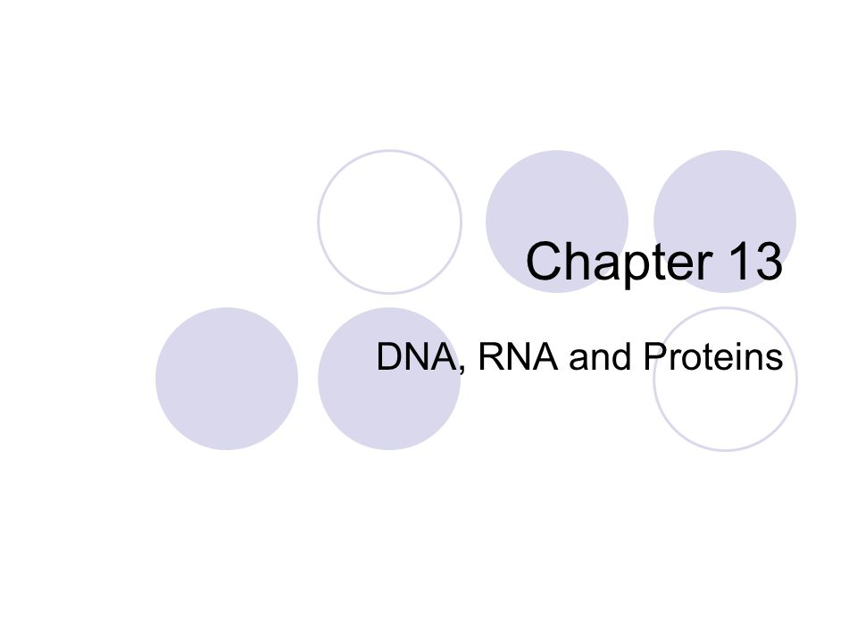 Pre-class question 4/27 If you were to take a chromosome, decompress it into chromatin, separate the nucleosomes and remove the histones, what would you have.