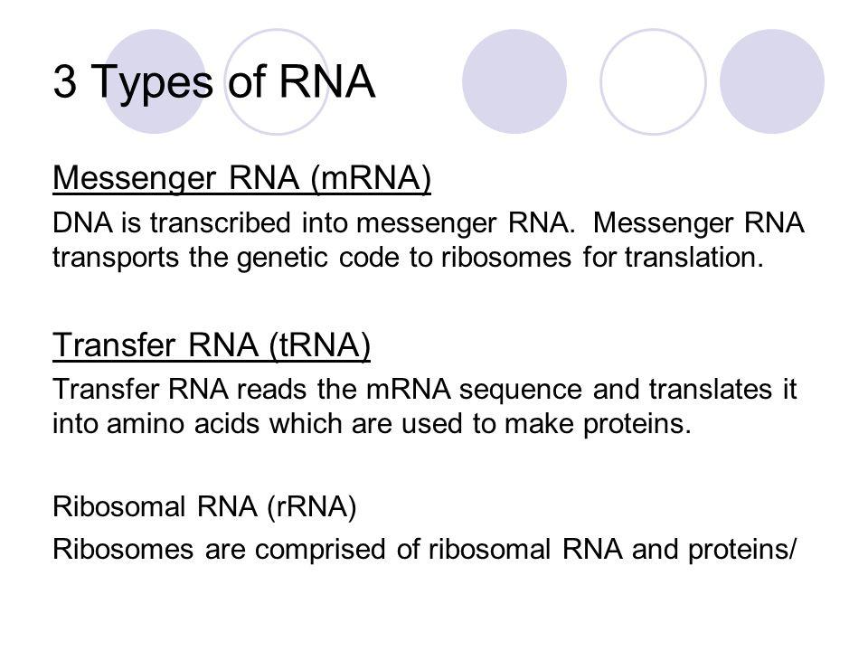 Transcription (3 Steps) Step 1 – RNA polymerase binds to a promoter gene or start location on the DNA.