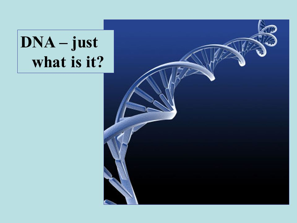 DNA – just what is it?