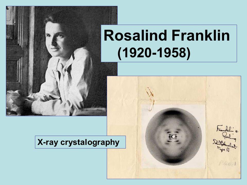 Rosalind Franklin (1920-1958) X-ray crystalography