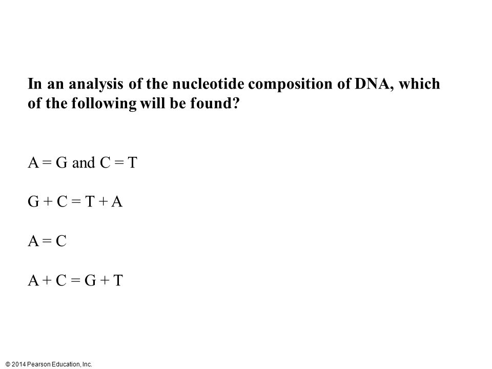 © 2014 Pearson Education, Inc. In an analysis of the nucleotide composition of DNA, which of the following will be found? A = G and C = T G + C = T +