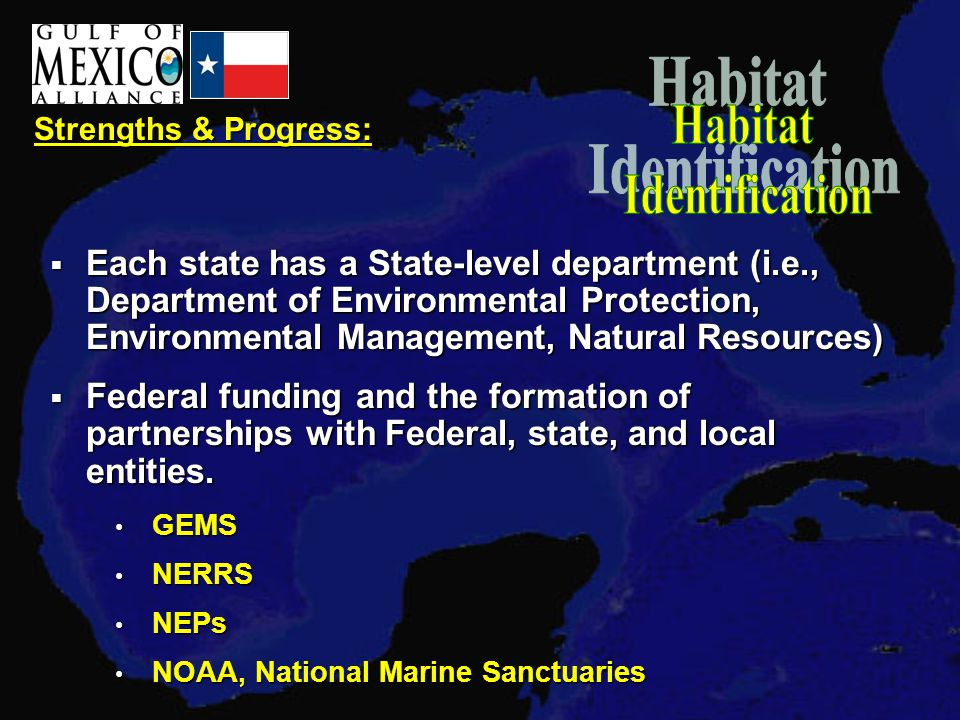 Strengths & Progress:  Each state has a State-level department (i.e., Department of Environmental Protection, Environmental Management, Natural Resources)  Federal funding and the formation of partnerships with Federal, state, and local entities.