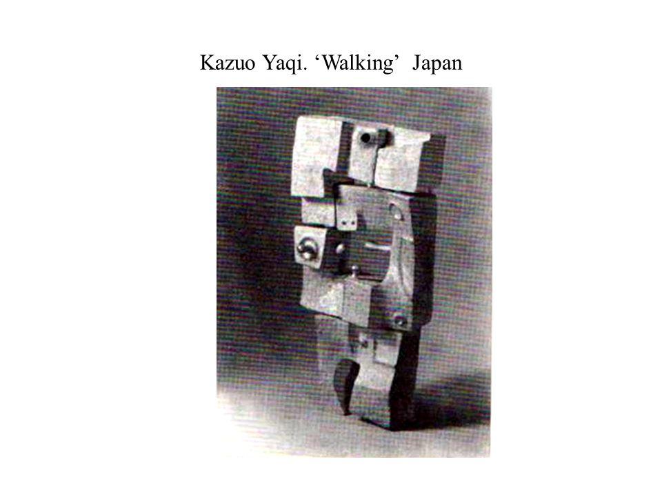 Kazuo Yaqi. 'Walking' Japan