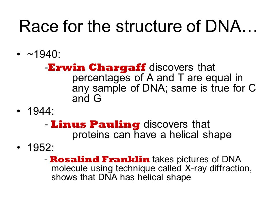Race for the structure of DNA… ~1940: - Erwin Chargaff discovers that percentages of A and T are equal in any sample of DNA; same is true for C and G 1944: - Linus Pauling discovers that proteins can have a helical shape 1952: - Rosalind Franklin takes pictures of DNA molecule using technique called X-ray diffraction, shows that DNA has helical shape