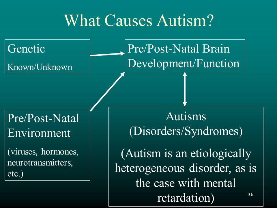 36 What Causes Autism? Genetic Known/Unknown Pre/Post-Natal Brain Development/Function Autisms (Disorders/Syndromes) (Autism is an etiologically heter