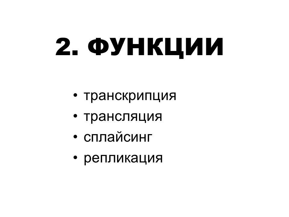 2. ФУНКЦИИ транскрипция трансляция сплайсинг репликация