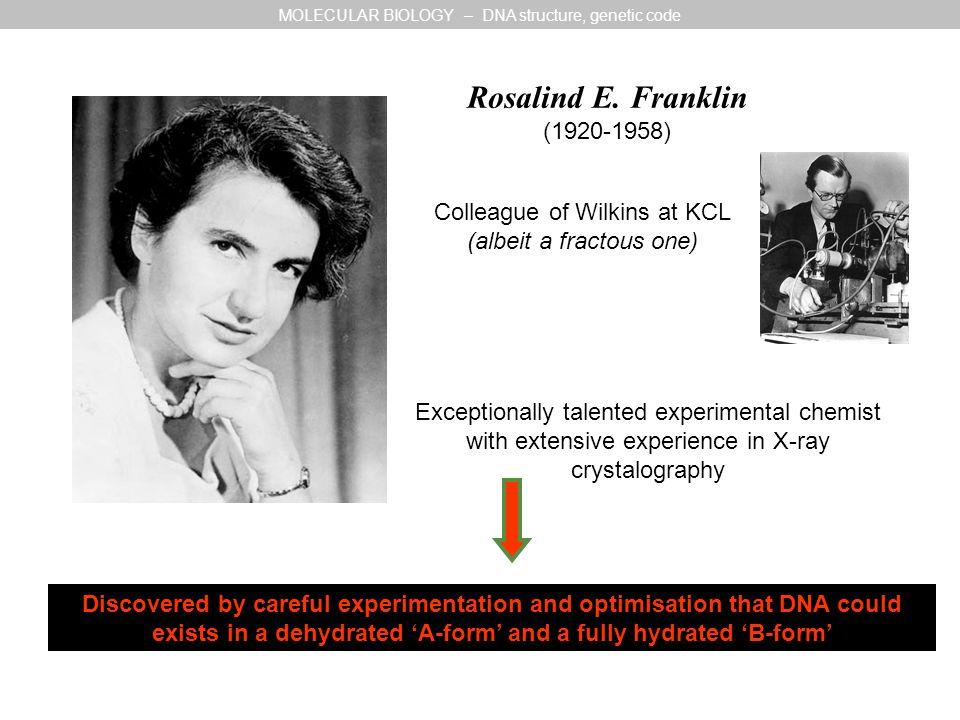 Rosalind E.