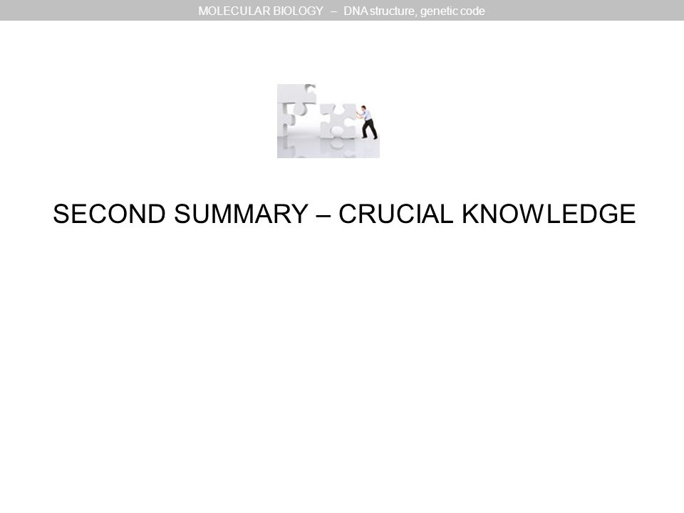 SECOND SUMMARY – CRUCIAL KNOWLEDGE MOLECULAR BIOLOGY – DNA structure, genetic code
