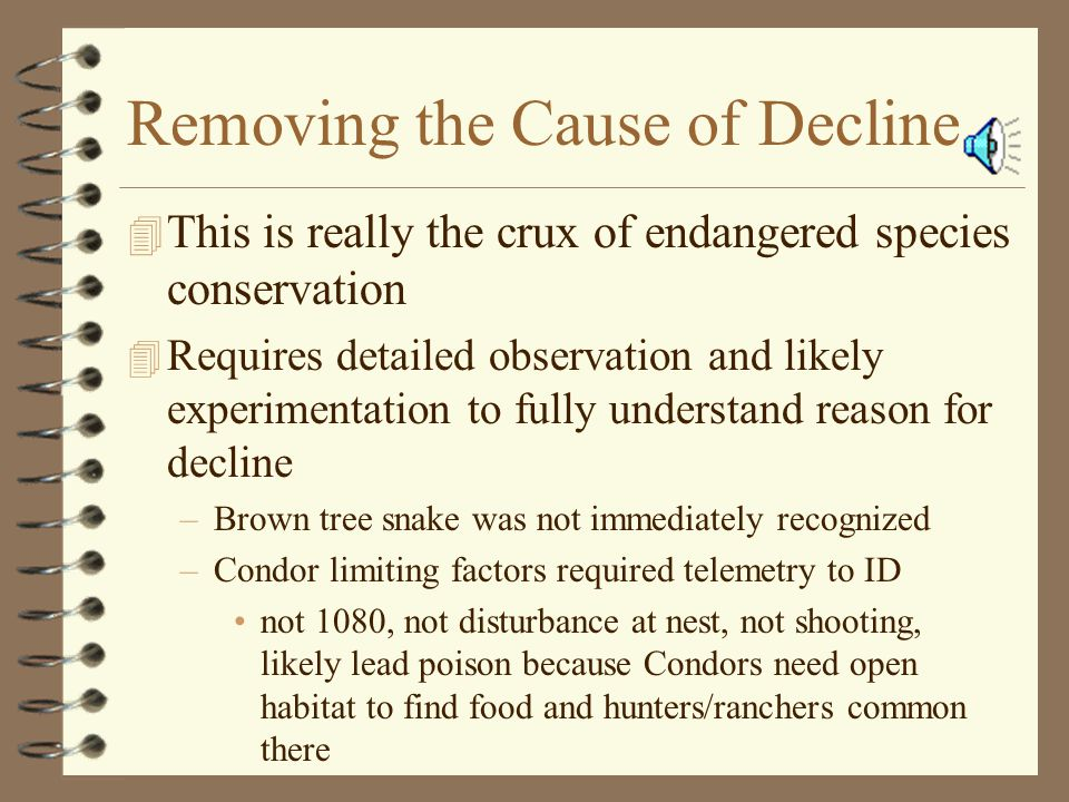 Removing the Cause of Decline 4 This is really the crux of endangered species conservation 4 Requires detailed observation and likely experimentation to fully understand reason for decline –Brown tree snake was not immediately recognized –Condor limiting factors required telemetry to ID not 1080, not disturbance at nest, not shooting, likely lead poison because Condors need open habitat to find food and hunters/ranchers common there