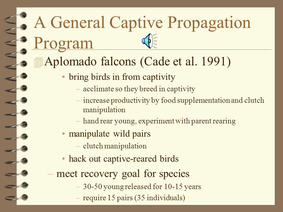 A General Captive Propagation Program 4 Aplomado falcons (Cade et al.