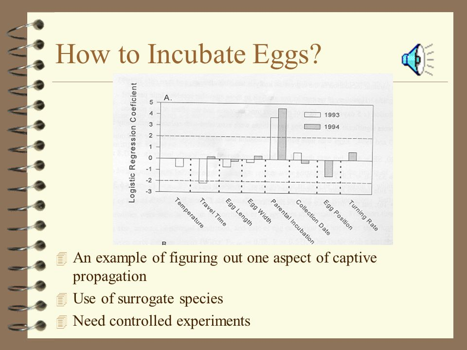 How to Incubate Eggs.