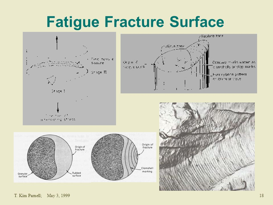 18T. Kim Parnell; May 3, 1999 Fatigue Fracture Surface