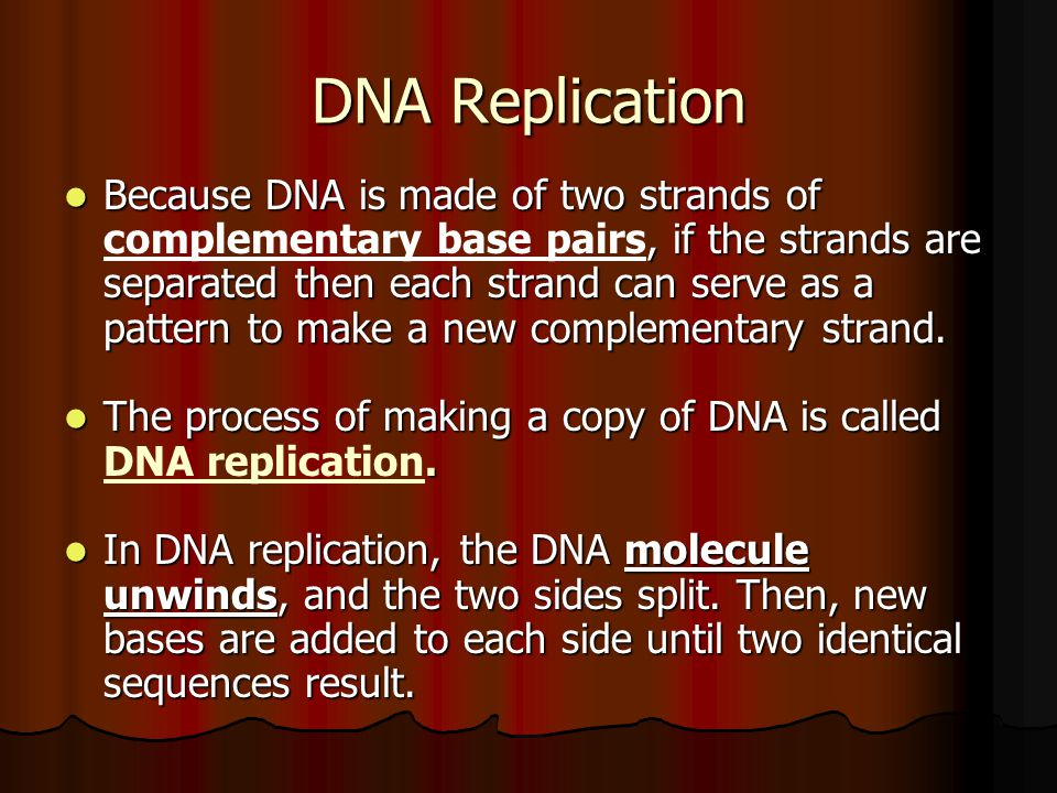 DNA Replication Because DNA is made of two strands of, if the strands are separated then each strand can serve as a pattern to make a new complementar