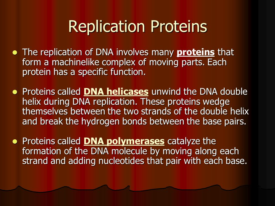 Replication Proteins The replication of DNA involves many that form a machinelike complex of moving parts. Each protein has a specific function. The r
