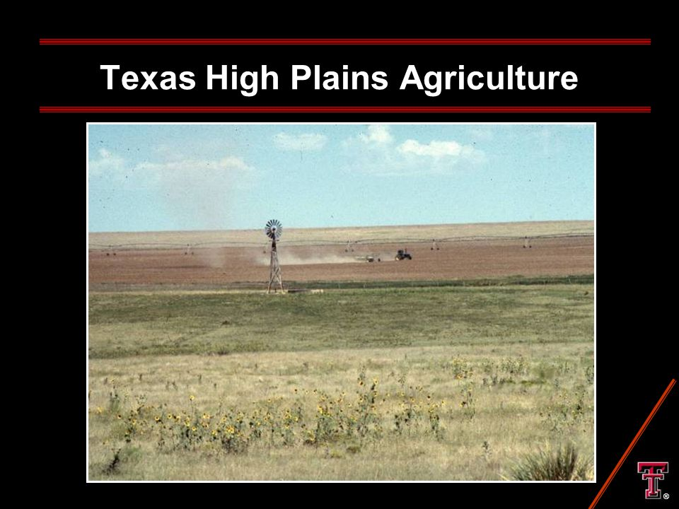 Texas High Plains Agriculture ®