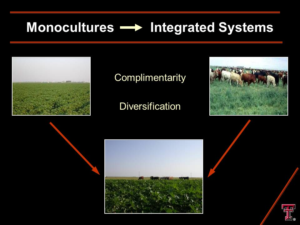 Monocultures Integrated Systems Complimentarity Diversification ®