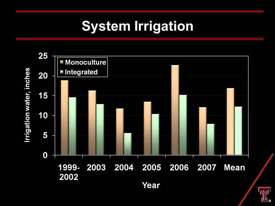 System Irrigation ®